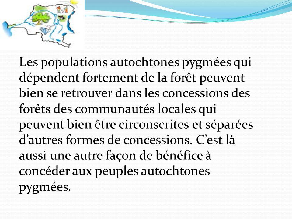 Les populations autochtones pygmées qui dépendent fortement de la forêt peuvent bien se retrouver dans les concessions des forêts des communautés locales qui peuvent bien être circonscrites et séparées dautres formes de concessions.