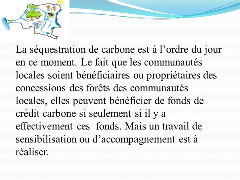 La séquestration de carbone est à lordre du jour en ce moment.