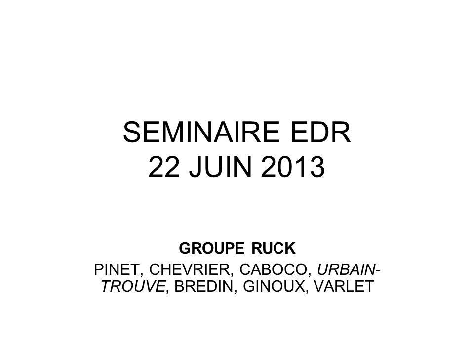 SEMINAIRE EDR 22 JUIN 2013 GROUPE RUCK PINET, CHEVRIER, CABOCO, URBAIN- TROUVE, BREDIN, GINOUX, VARLET