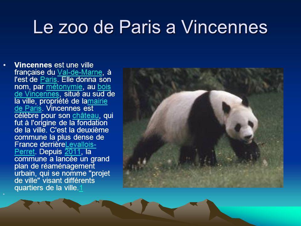Le zoo de Paris a Vincennes Vincennes est une ville française du Val-de-Marne, à l'est de Paris. Elle donna son nom, par métonymie, au bois de Vincenn