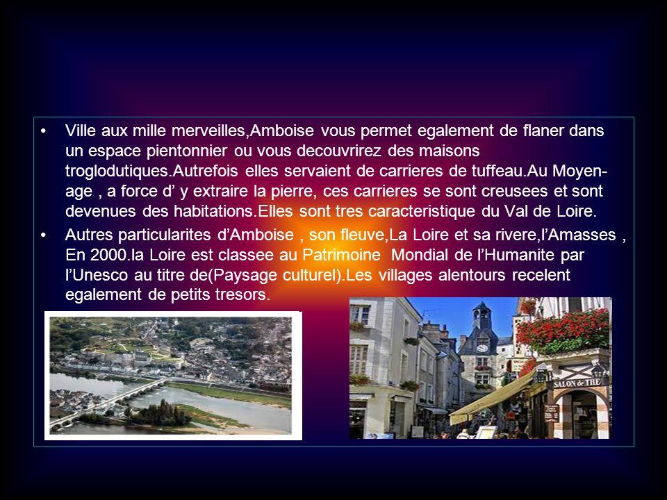 Ville aux mille merveilles,Amboise vous permet egalement de flaner dans un espace pientonnier ou vous decouvrirez des maisons troglodutiques.Autrefois