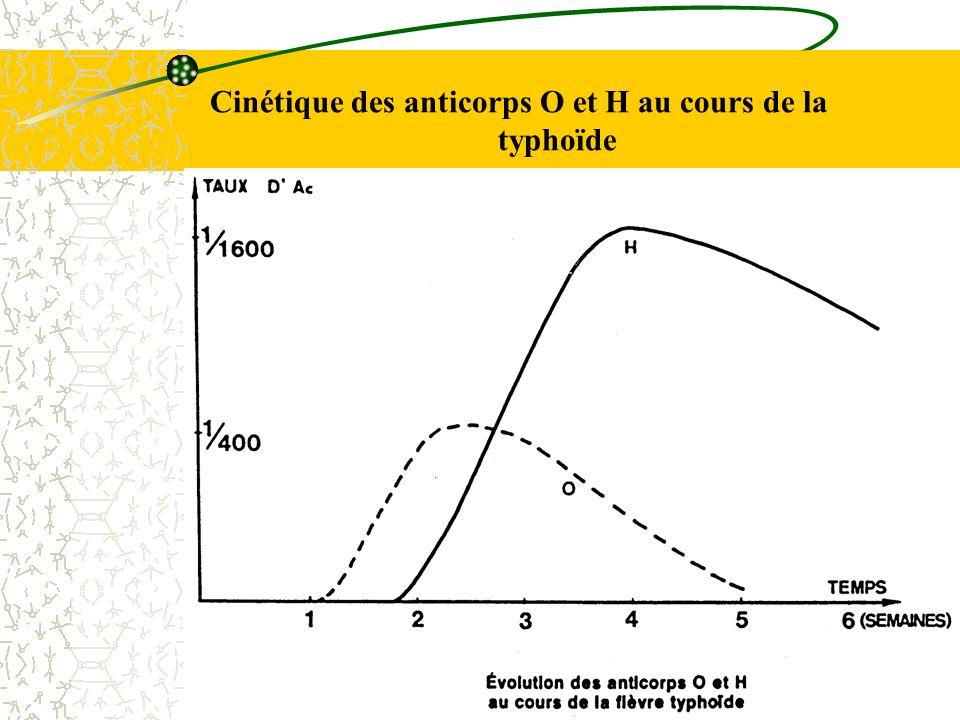 Cinétique des anticorps O et H au cours de la typhoïde