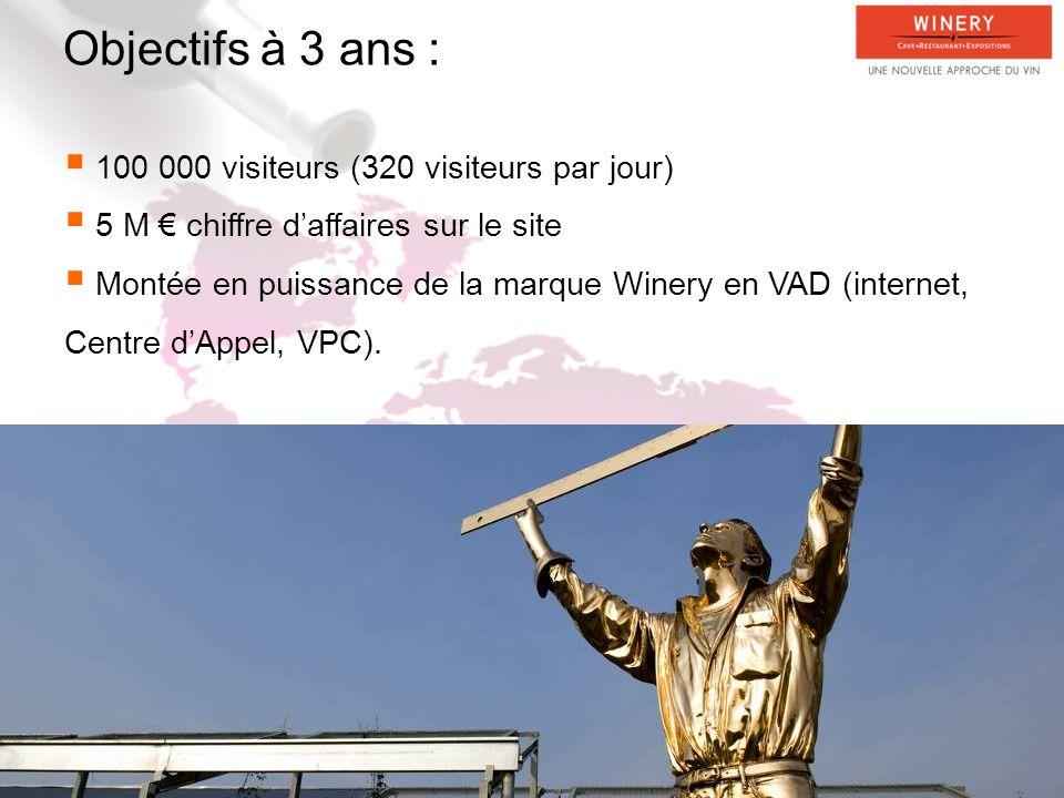 Objectifs à 3 ans : 100 000 visiteurs (320 visiteurs par jour) 5 M chiffre daffaires sur le site Montée en puissance de la marque Winery en VAD (internet, Centre dAppel, VPC).
