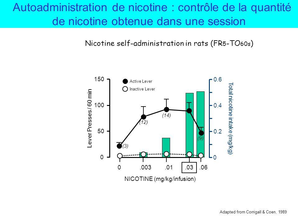 Autoadministration de nicotine : nombre dinjections en fonction de la dose de nicotine Session dune heure par jour v)