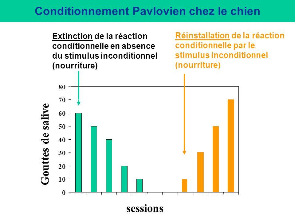 1. Conditionnement classique (Type I, Pavlovien) 1927: Procédure expérimentale visant au contrôle dun comportement par un stimulus initialement neutre
