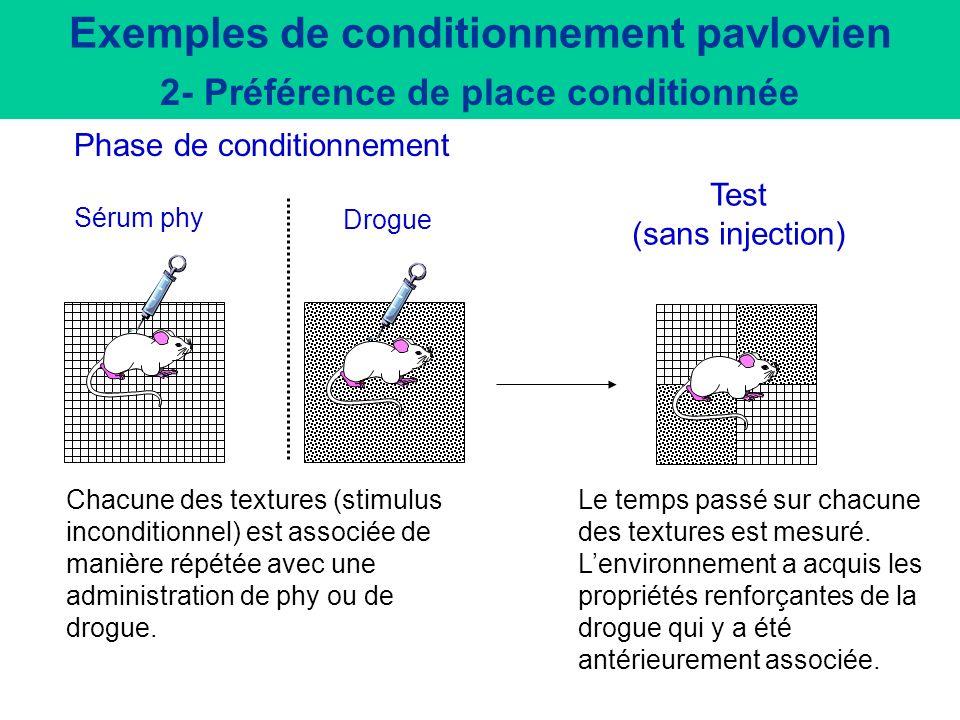 Extinction de la réaction conditionnelle en absence du stimulus inconditionnel (nourriture) Réinstallation de la réaction conditionnelle par le stimul