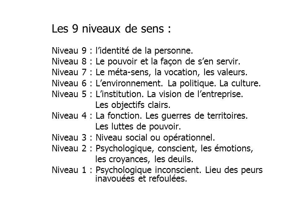 Les 9 niveaux de sens : Niveau 9 : lidentité de la personne. Niveau 8 : Le pouvoir et la façon de sen servir. Niveau 7 : Le méta-sens, la vocation, le