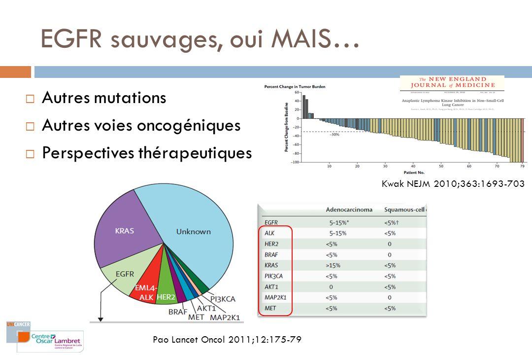 EGFR sauvages, oui MAIS… Autres mutations Autres voies oncogéniques Perspectives thérapeutiques Pao Lancet Oncol 2011;12:175-79 Kwak NEJM 2010;363:169
