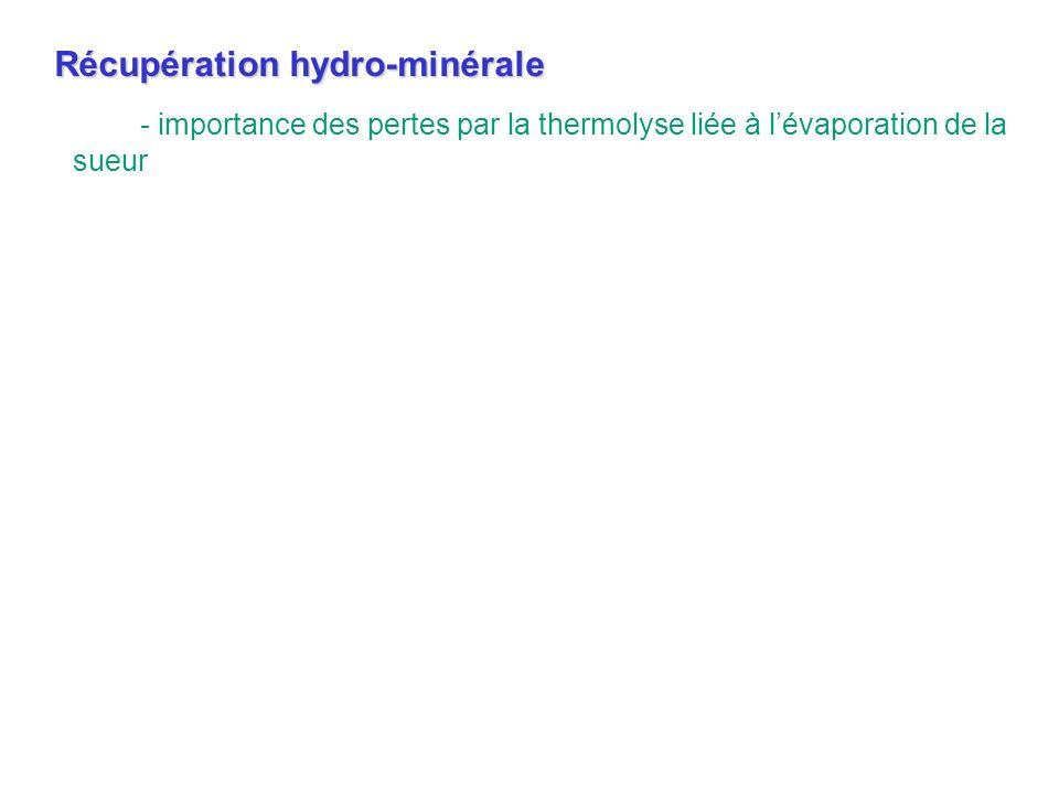 - importance des pertes par la thermolyse liée à lévaporation de la sueur Récupération hydro-minérale