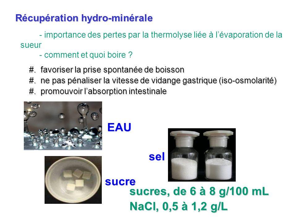 - importance des pertes par la thermolyse liée à lévaporation de la sueur - comment et quoi boire ? Récupération hydro-minérale #. favoriser la prise