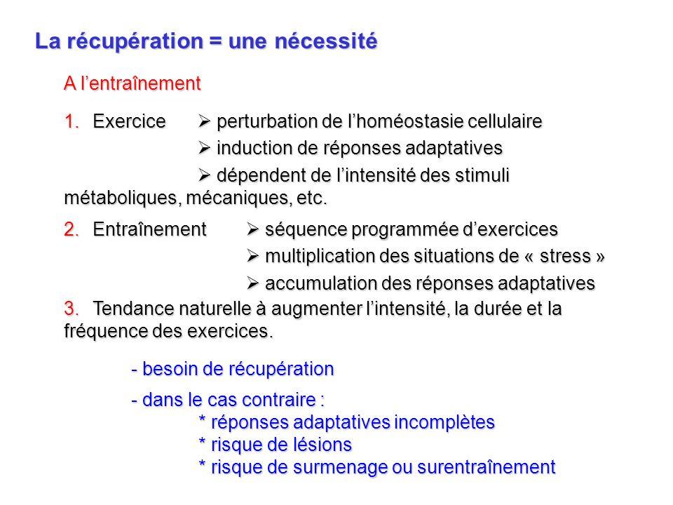 La récupération = une nécessité 1.Exercice perturbation de lhoméostasie cellulaire induction de réponses adaptatives induction de réponses adaptatives