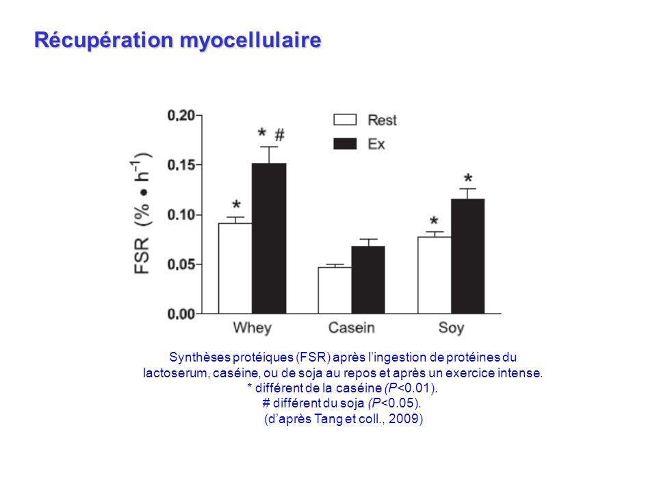 Synthèses protéiques (FSR) après lingestion de protéines du lactoserum, caséine, ou de soja au repos et après un exercice intense. * différent de la c