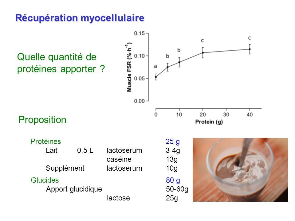 Récupération myocellulaire Glucides80 g Apport glucidique50-60g lactose25g Proposition Protéines25 g Lait0,5 Llactoserum3-4g caséine13g Supplément lac