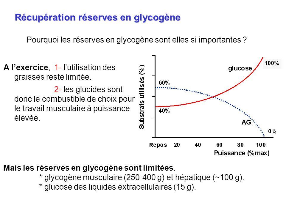 Pourquoi les réserves en glycogène sont elles si importantes ? Récupération réserves en glycogène A lexercice,1- lutilisation des graisses reste limit
