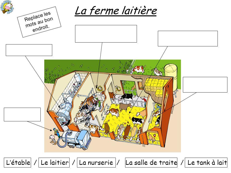 La ferme laitière Létable / Le laitier / La nurserie / La salle de traite / Le tank à lait Replace les mots au bon endroit.