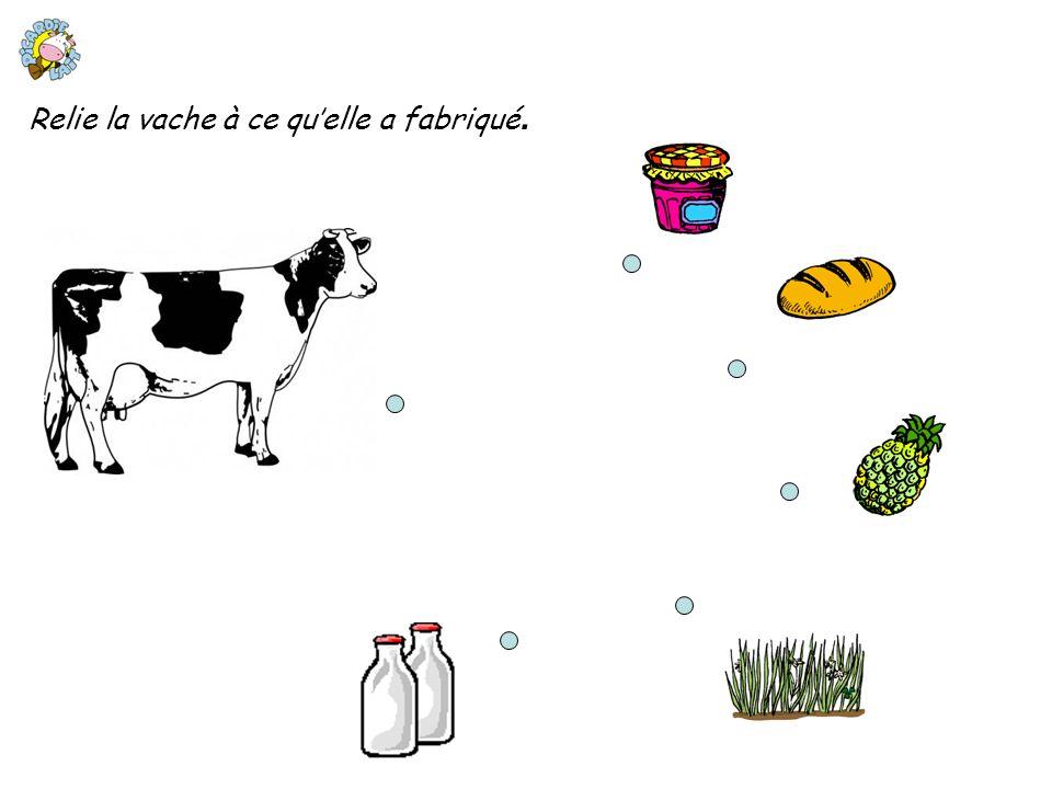 Relie la vache à ce quelle a fabriqué.