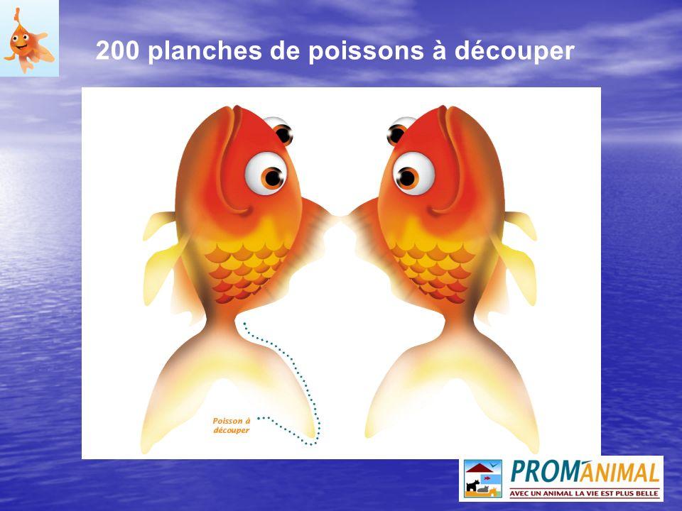 200 guides pédagogiques Explication de la mise en eau dun aquarium deau froide sous forme de quiz : Explication de la mise en eau dun aquarium deau froide sous forme de quiz : - qui est Hugo .