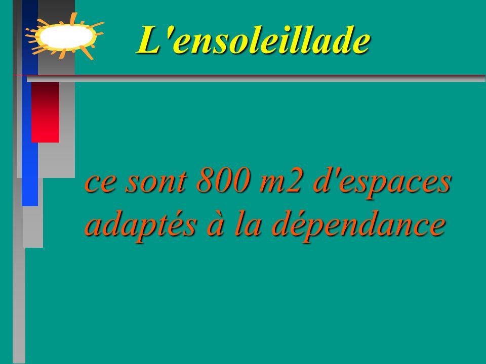 L'ensoleillade L'ensoleillade ce sont 800 m2 d'espaces adaptés à la dépendance ce sont 800 m2 d'espaces adaptés à la dépendance