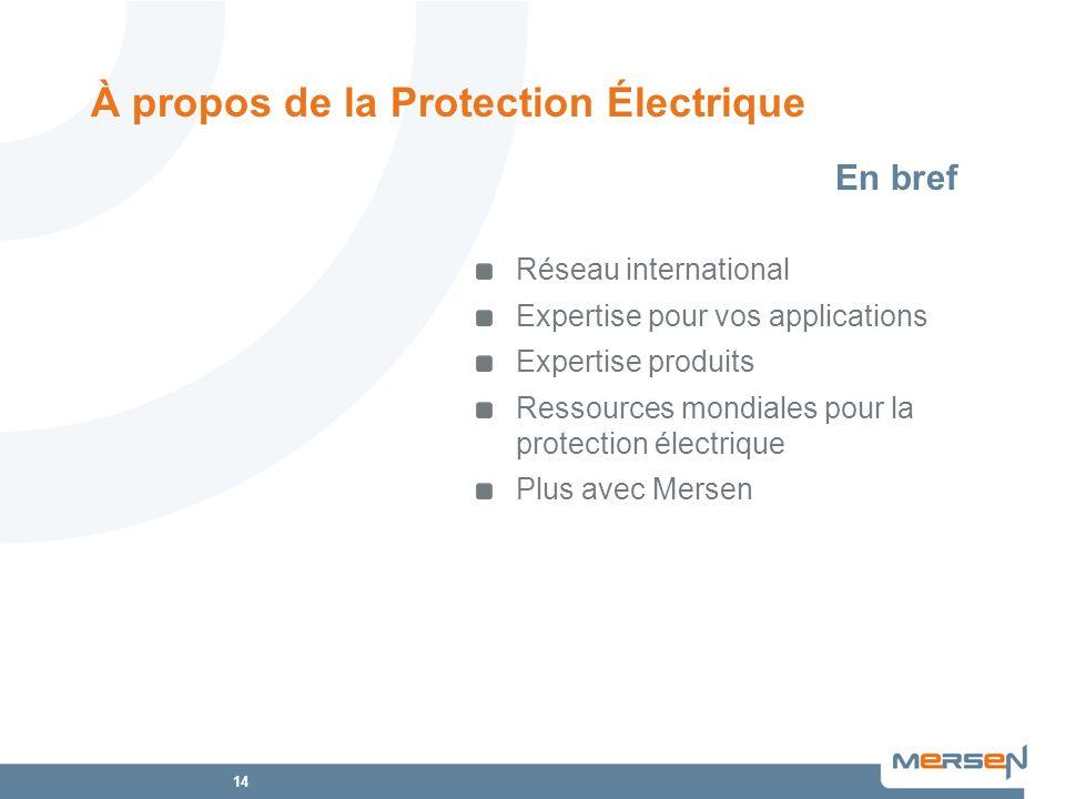 14 À propos de la Protection Électrique Réseau international Expertise pour vos applications Expertise produits Ressources mondiales pour la protectio