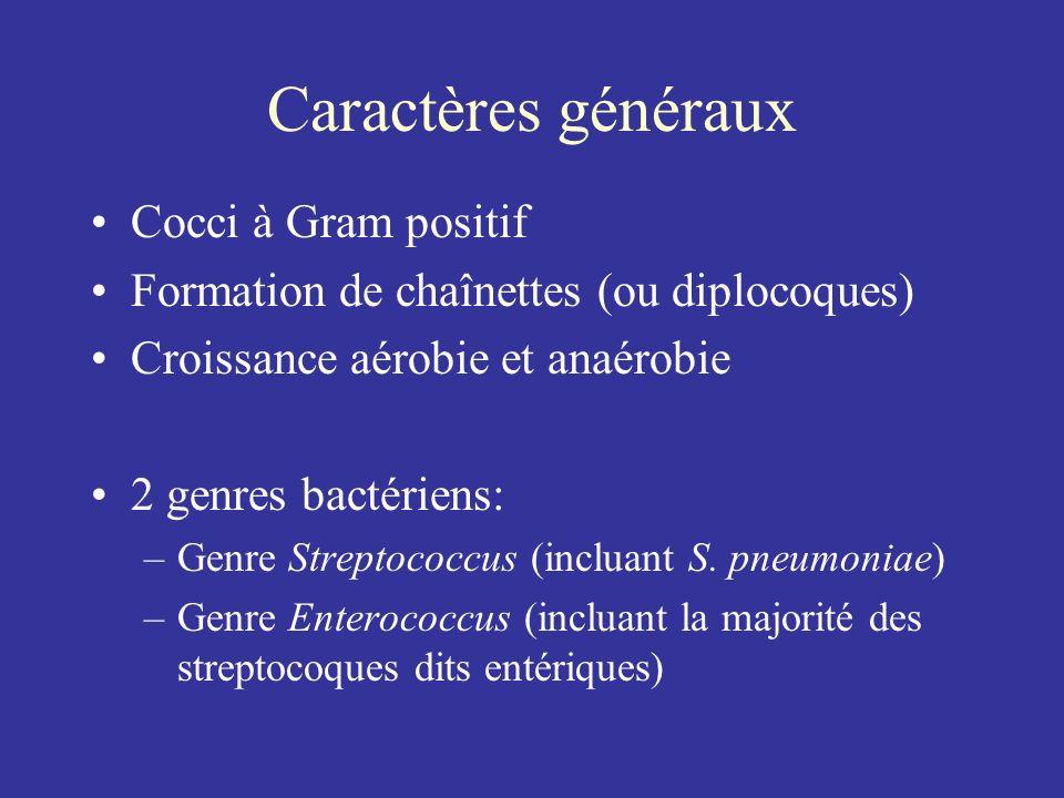 Caractères généraux Cocci à Gram positif Formation de chaînettes (ou diplocoques) Croissance aérobie et anaérobie 2 genres bactériens: –Genre Streptoc
