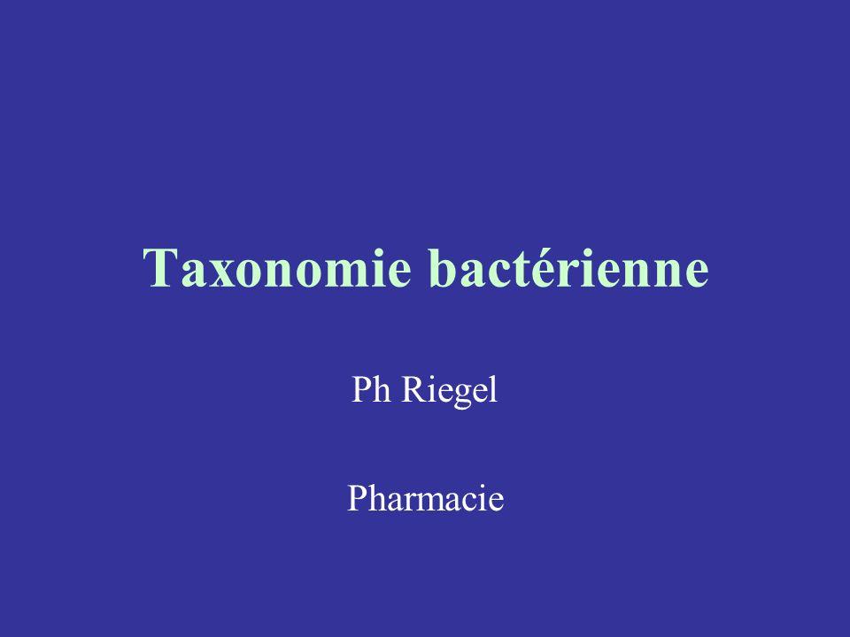 Taxonomie bactérienne Ph Riegel Pharmacie