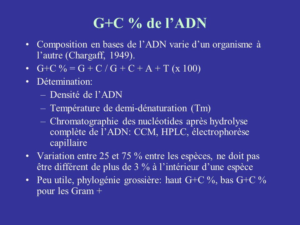 G+C % de lADN Composition en bases de lADN varie dun organisme à lautre (Chargaff, 1949). G+C % = G + C / G + C + A + T (x 100) Détemination: –Densité