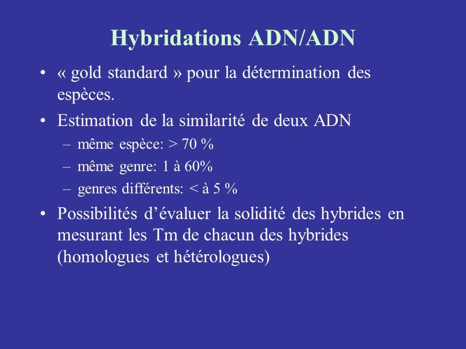 Hybridations ADN/ADN « gold standard » pour la détermination des espèces. Estimation de la similarité de deux ADN –même espèce: > 70 % –même genre: 1