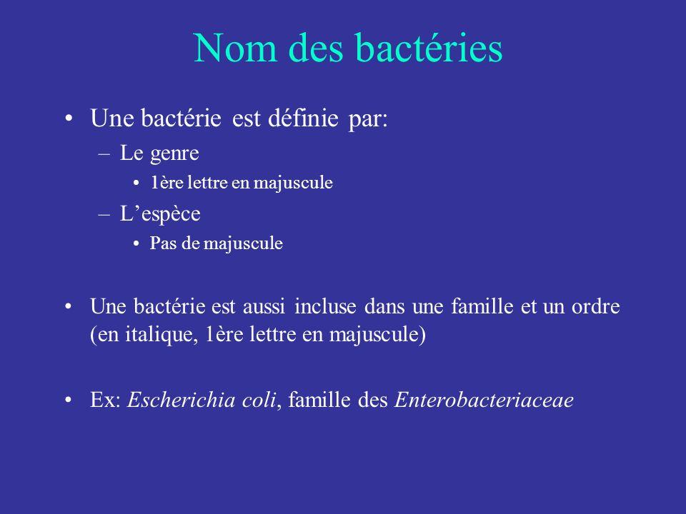 Nom des bactéries Une bactérie est définie par: –Le genre 1ère lettre en majuscule –Lespèce Pas de majuscule Une bactérie est aussi incluse dans une f