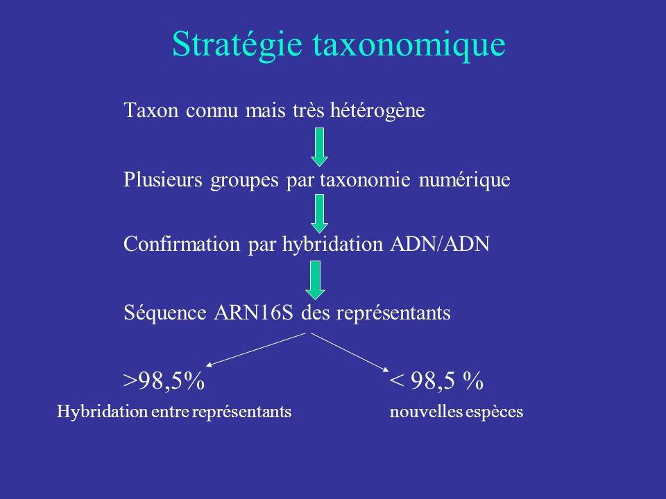 Stratégie taxonomique Taxon connu mais très hétérogène Plusieurs groupes par taxonomie numérique Confirmation par hybridation ADN/ADN Séquence ARN16S