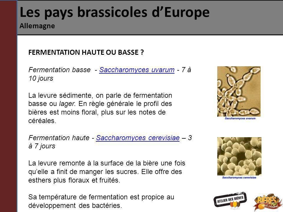 Les pays brassicoles dEurope Allemagne FERMENTATION HAUTE OU BASSE ? Fermentation basse - Saccharomyces uvarum - 7 à 10 jours La levure sédimente, on