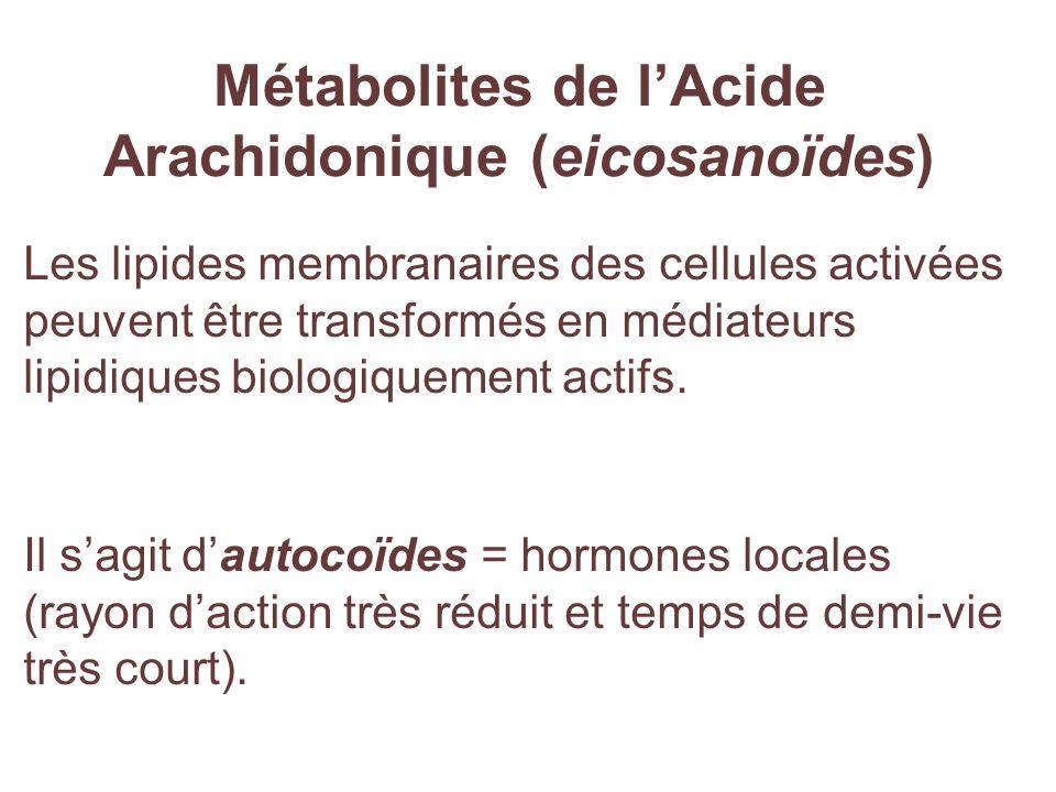 Métabolites de lAcide Arachidonique (eicosanoïdes) Les lipides membranaires des cellules activées peuvent être transformés en médiateurs lipidiques bi