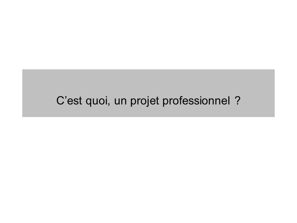 Un projet professionnel, cest….