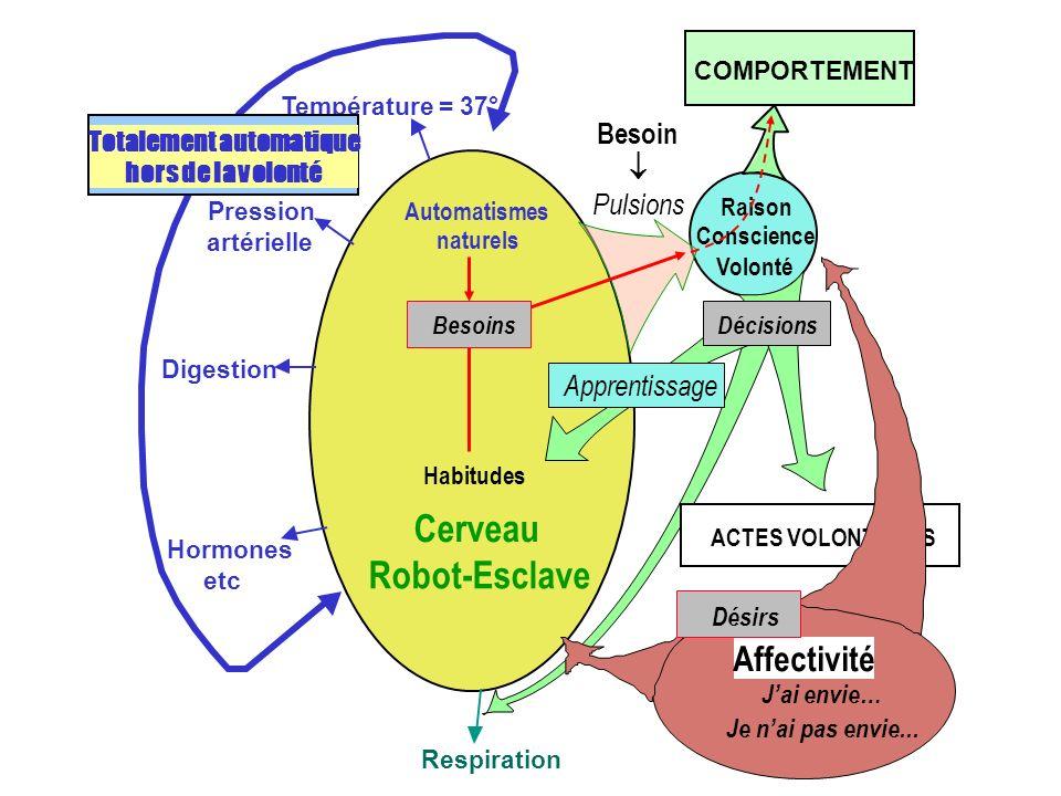 Cerveau Robot-Esclave Température = 37° Pression artérielle Digestion Hormones etc Totalement automatique hors de la volonté Respiration COMPORTEMENT