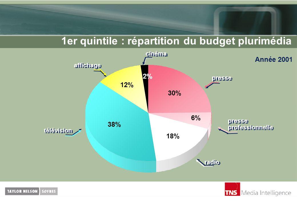 1er quintile : répartition du budget plurimédia Année 2001 cinéma radio 6% 30% 2% 18% 38% 12% presse presse professionnelle télévision affichage