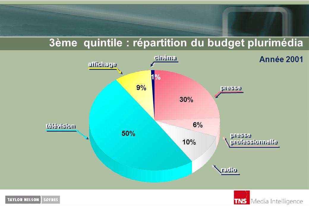 3ème quintile : répartition du budget plurimédia Année 2001 1% 9% 50% 10% 6% 30% presse professionnelle radio télévision cinéma presse affichage