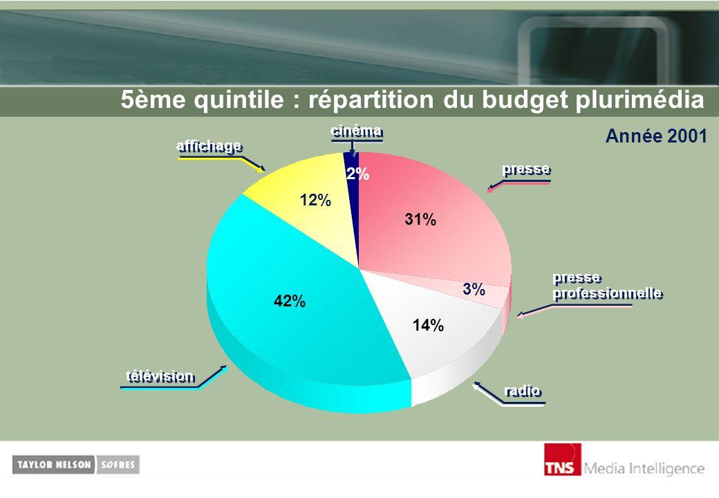 5ème quintile : répartition du budget plurimédia Année 2001 cinéma 2% 12% 42% 14% 3% 31% presse presse professionnelle radio télévision affichage