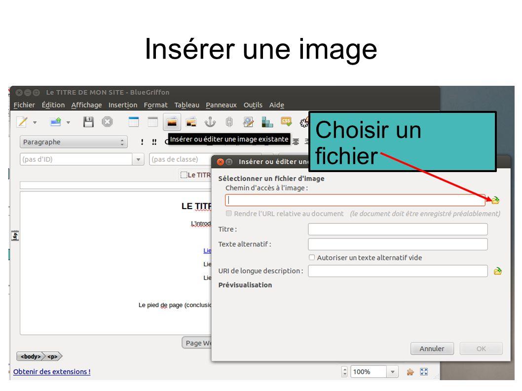 Insérer une image Choisir un fichier
