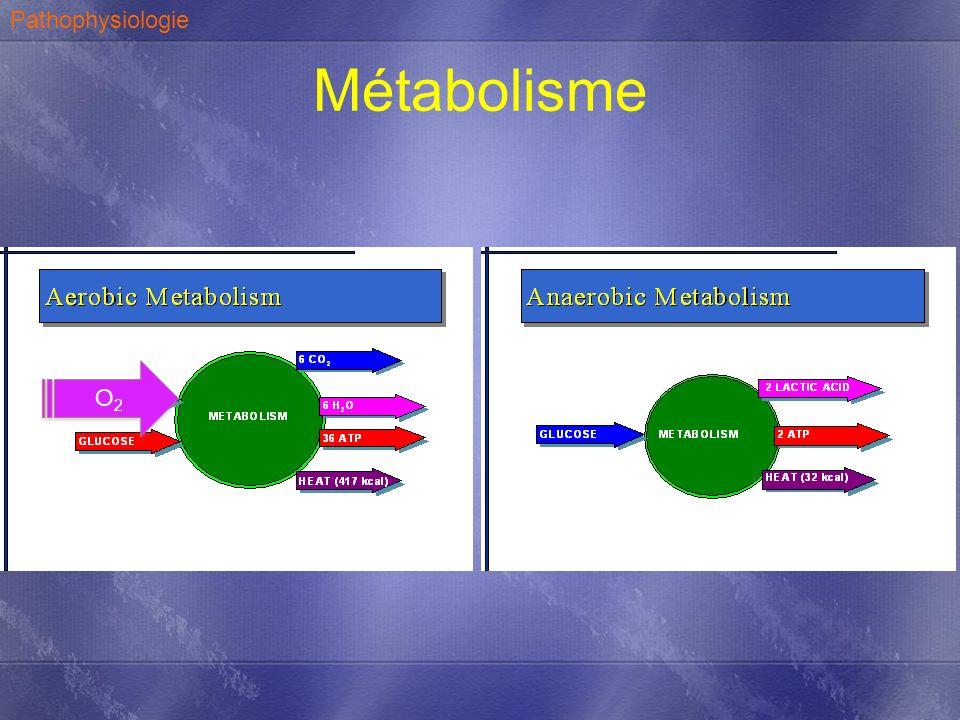 Métabolisme O2O2 O2O2 Pathophysiologie