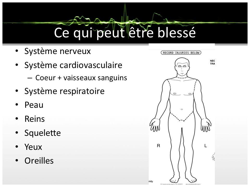 Système nerveux Système cardiovasculaire – Coeur + vaisseaux sanguins Système respiratoire Peau Reins Squelette Yeux Oreilles Ce qui peut être blessé