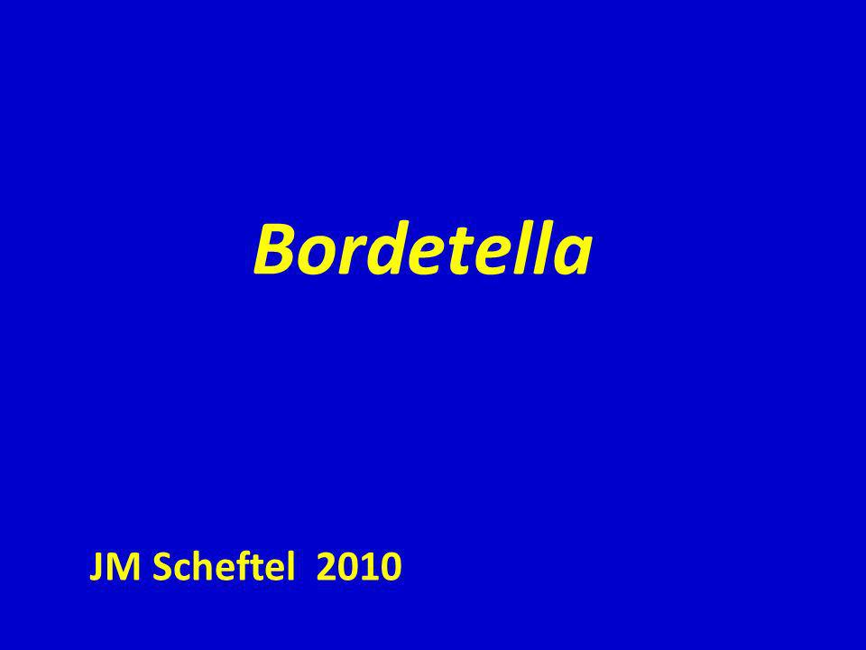 Historique: Jules Bordet décrit en 1900 un bacille à Gram (-) comme lagent de la coqueluche dans le frottis dun prélèvement respiratoire.