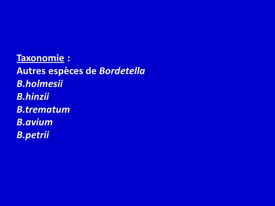 Taxonomie : Autres espèces de Bordetella B.holmesii B.hinzii B.trematum B.avium B.petrii