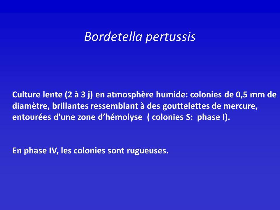 La toxine pertussique (PTX) S1 ADP ribosyle la SU α de la Gi protéine au niveau dune cystéine de la région C-terminale