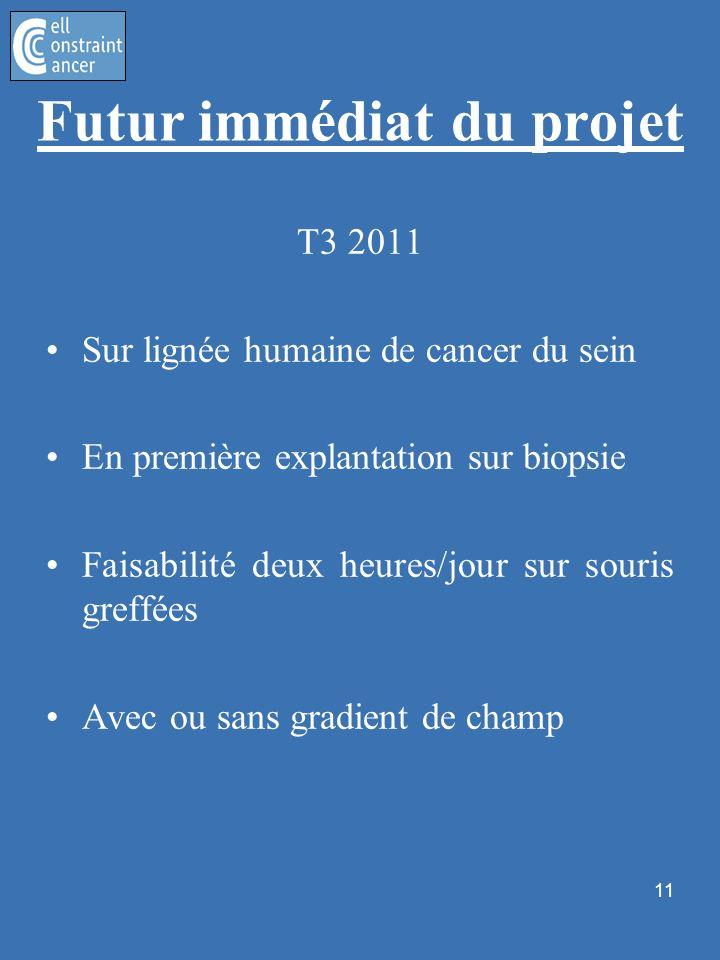 11 Futur immédiat du projet T3 2011 Sur lignée humaine de cancer du sein En première explantation sur biopsie Faisabilité deux heures/jour sur souris