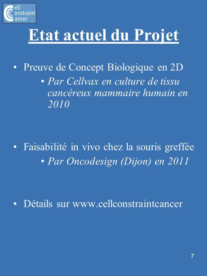 8 Expérimentation à linstitut Curie (Paris) Preuve de Concept in vivo chez lanimal, en 3D Futur immédiat du projet