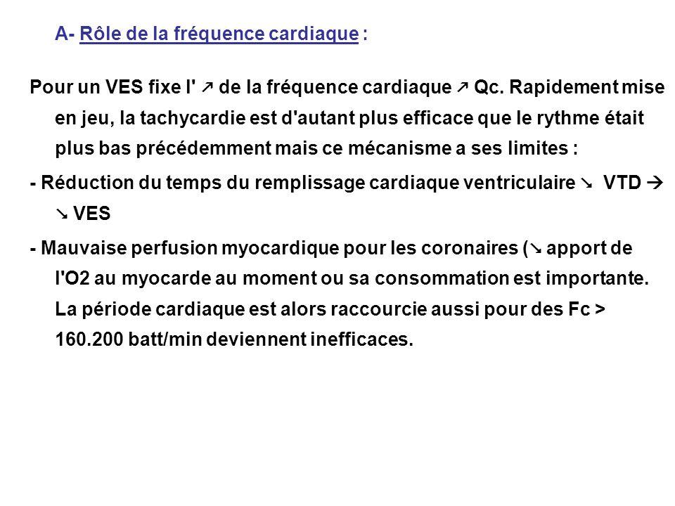A- Rôle de la fréquence cardiaque : Pour un VES fixe l' de la fréquence cardiaque Qc. Rapidement mise en jeu, la tachycardie est d'autant plus efficac