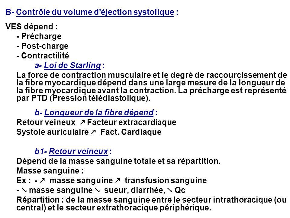 B- Contrôle du volume d'éjection systolique : VES dépend : - Précharge - Post-charge - Contractilité a- Loi de Starling : La force de contraction musc