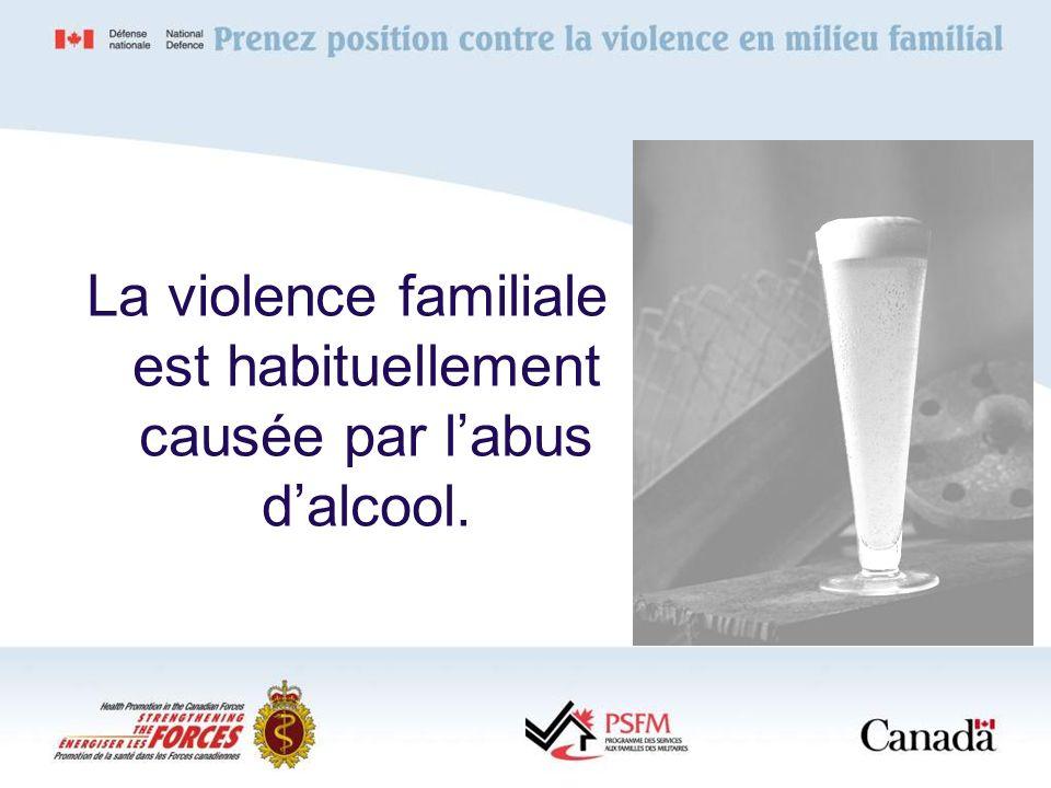 La violence familiale est habituellement causée par labus dalcool.