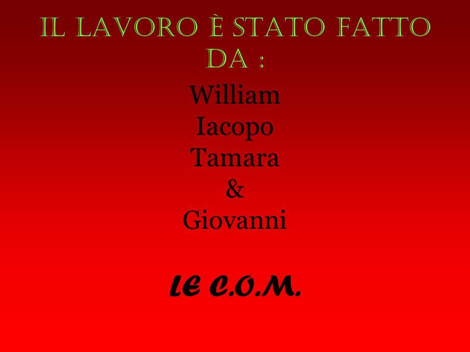 Il lavoro è stato fatto da : William Iacopo Tamara & Giovanni LE C.O.M.