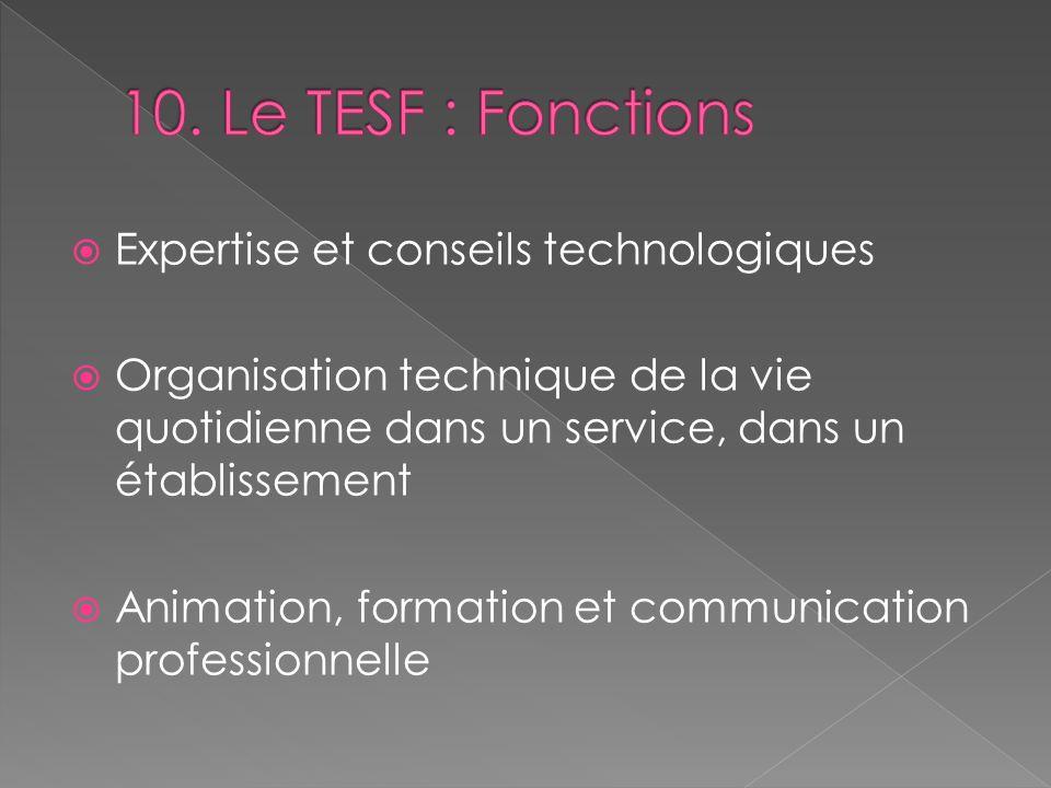 Expertise et conseils technologiques Organisation technique de la vie quotidienne dans un service, dans un établissement Animation, formation et commu