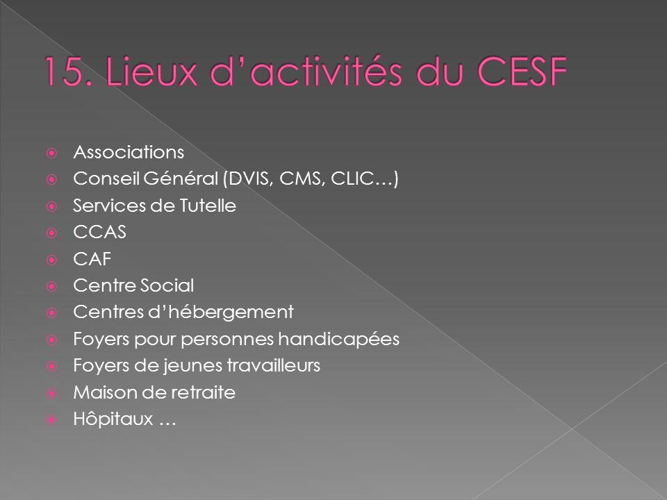 Associations Conseil Général (DVIS, CMS, CLIC…) Services de Tutelle CCAS CAF Centre Social Centres dhébergement Foyers pour personnes handicapées Foye